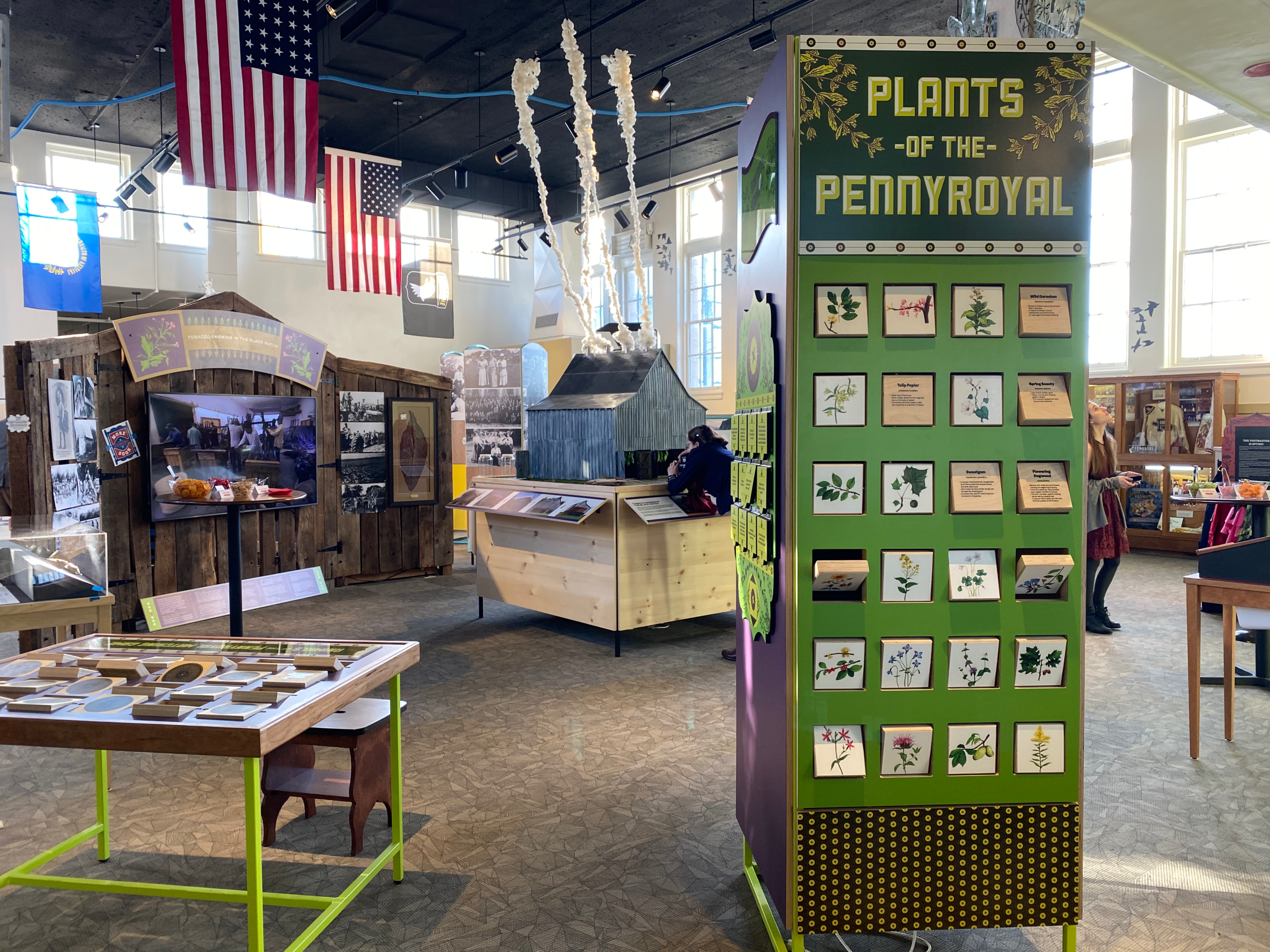 Final exhibition layout for the Pennyroyal Area Museum.