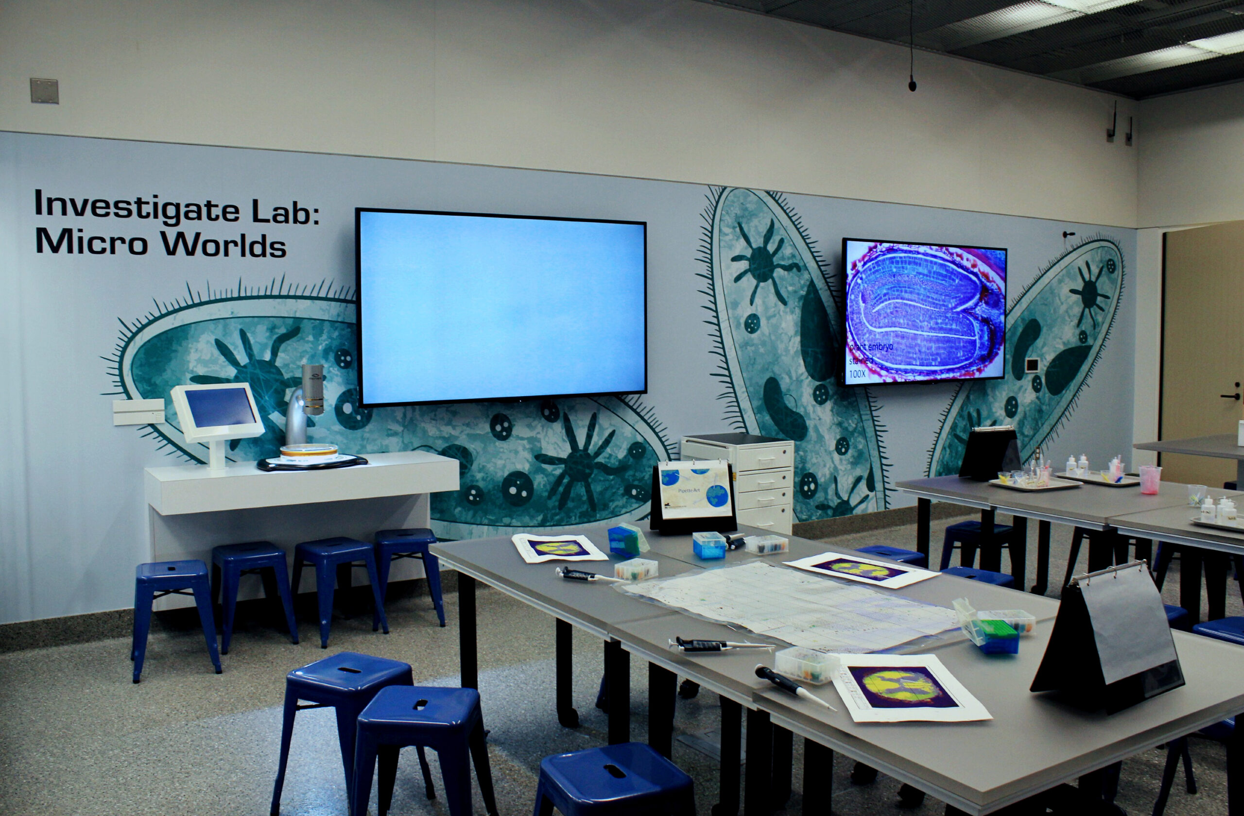 A bacterium lab mural Flutter & Wow designed for the Investigate Labs.