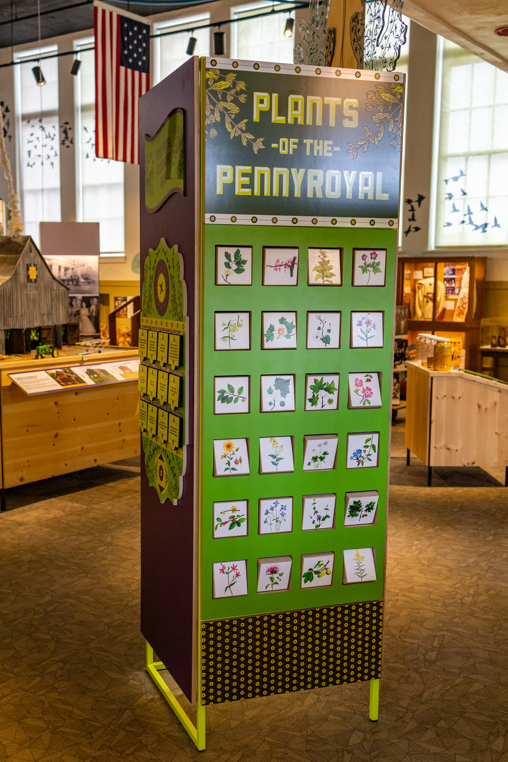 Interactive spin blocks depict native plants of the Pennyroyal area for visitors to interpret.