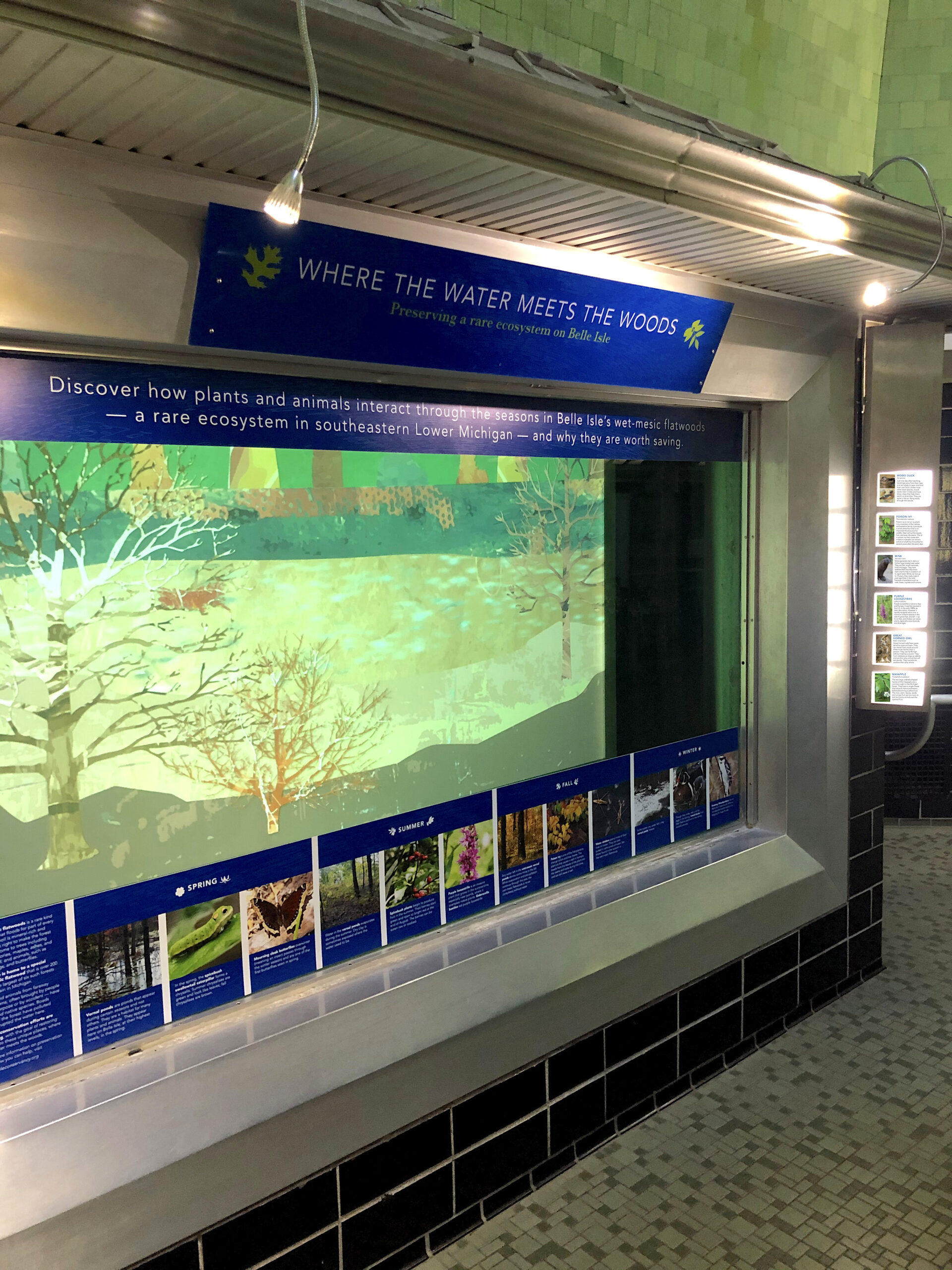 Final installation at the Belle Isle Aquarium.